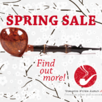 SPRING-banner-ad-300x250-working-01